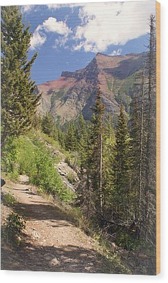 Along St. Mary's Lake Trail Wood Print by Marty Koch