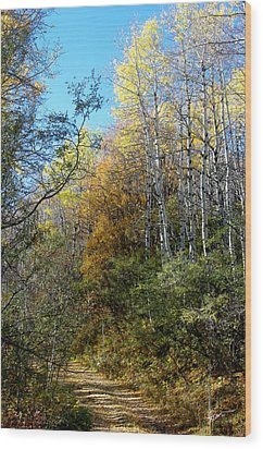 Wood Print featuring the photograph Along The Back Road by Vicki Pelham