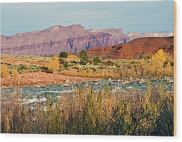 Wood Print featuring the photograph Along The Colorado River by Geraldine Alexander