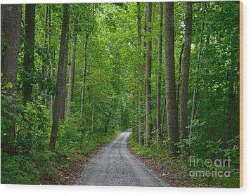 The Road To Thomas Jefferson's House Wood Print