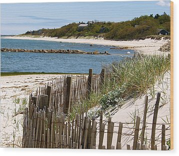 Along The Shoreline Of Brewster Beach Wood Print