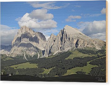 Wood Print featuring the photograph Alpe Di Siusi by Raffaella Lunelli