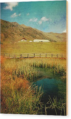Alpe Nemes In South Tyrol Wood Print by Angela Bruno