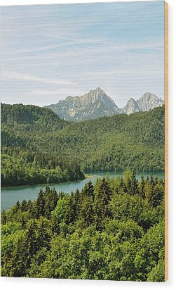 Alps From Bavaria Wood Print by Rick Frost