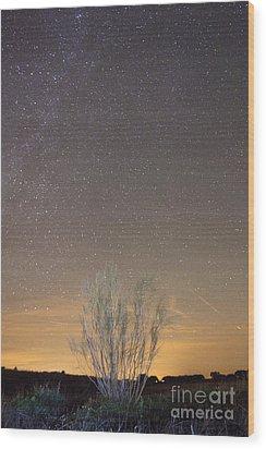 Alqueva Dark Sky Reserve Wood Print by Andre Goncalves