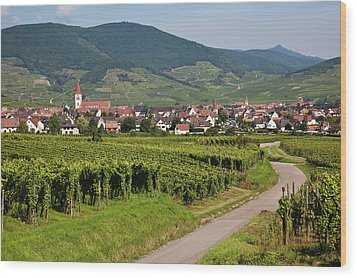 Alsace, France. Wood Print by Buena Vista Images