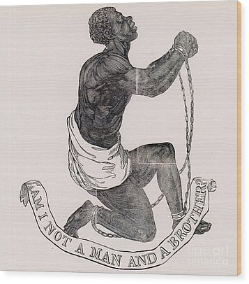 Am I Not A Man And A Brother Wood Print by Photo Researchers