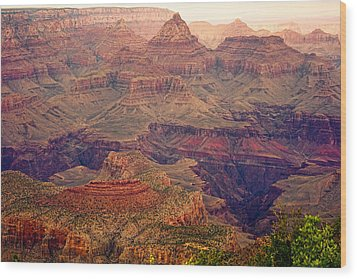 Amazing Colorful Spring Grand Canyon View Wood Print by James BO  Insogna