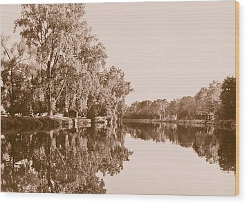 Wood Print featuring the photograph Amber Reflection by Sara Frank