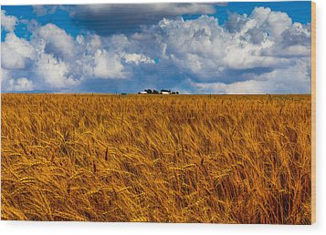 Amber Waves Of Grain Wood Print by Doug Long