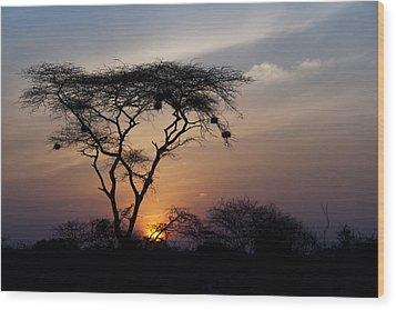 Amboseli Sunrise Wood Print