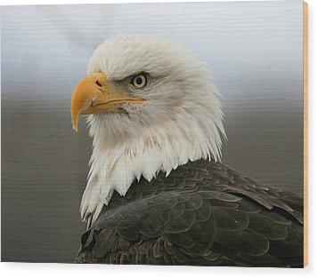 American Bald Eagle Portrait Wood Print by Myrna Bradshaw