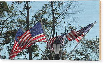 American Beauty Wood Print by James Hammen