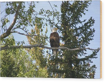 Wood Print featuring the photograph American Eagle by Living Color Photography Lorraine Lynch