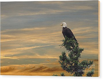Wood Print featuring the photograph American Eagle Sunset by Dan Friend