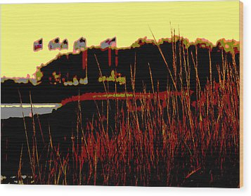 American Flags2 Wood Print by Zawhaus Photography