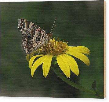 American Lady Wood Print