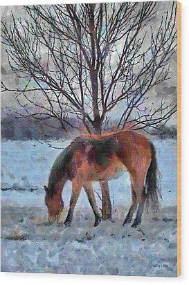 American Paint In Winter Wood Print by Jeff Kolker