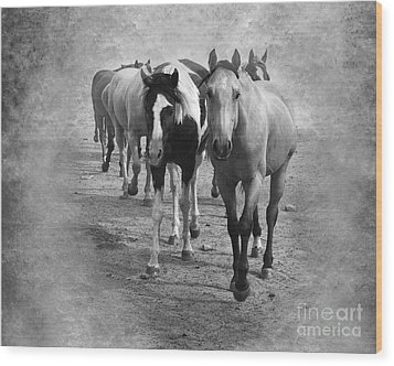 American Quarter Horse Herd In Black And White Wood Print by Betty LaRue