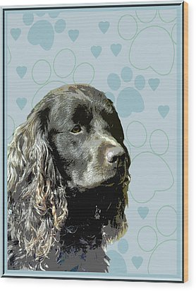 American Water Spaniel Wood Print by One Rude Dawg Orcutt
