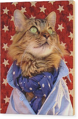 Wood Print featuring the photograph Americana Cat by Joann Biondi