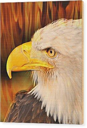 Americasn Bald Eagle Wood Print by Marty Koch