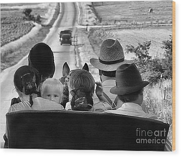 Amish Family Outing II Wood Print by Julie Dant