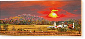 Amish Farm Sundown Wood Print by Randall Branham