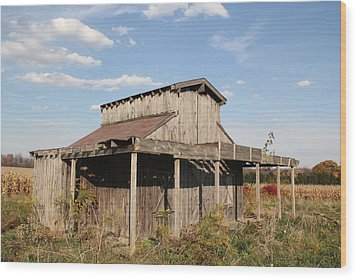 Amish Shed #3 Wood Print by Donna Bosela