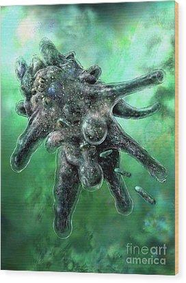 Amoeba Green Wood Print by Russell Kightley
