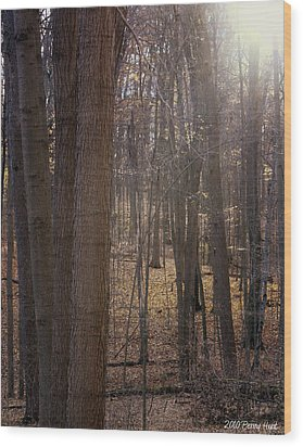 Wood Print featuring the photograph Amongst Elves by Penny Hunt