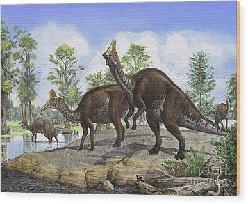 Amurosaurus Riabinini Dinosaurs Grazing Wood Print by Sergey Krasovskiy