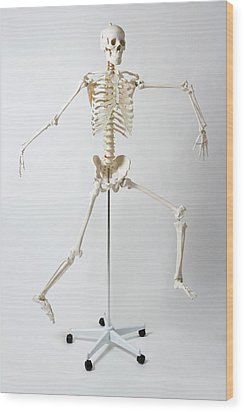 An Anatomical Skeleton Model Running And Jumping Wood Print by Rachel de Joode
