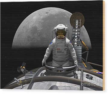 An Astronaut Takes A Last Look At Earth Wood Print by Walter Myers
