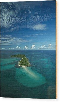 An Island In The Quirimbas Archipelago Wood Print by Jad Davenport