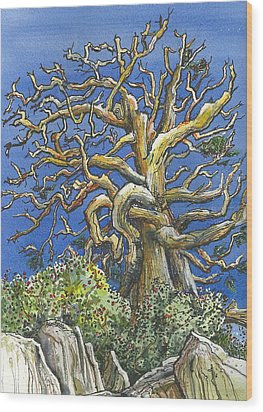 An Old Bristol Pine Wood Print by Terry Banderas