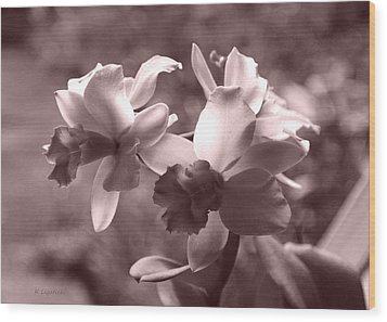 Wood Print featuring the photograph An Orchid Dream by Kerri Ligatich