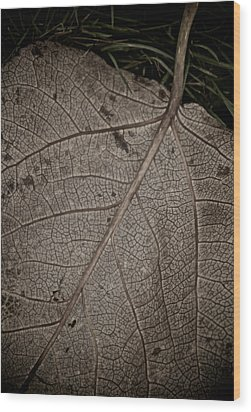 Ancient Skin Wood Print by Odd Jeppesen