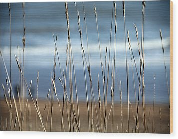 And Then The Sea Wood Print by Jez C Self