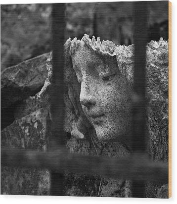 Angel In Bars Wood Print by David Waldo