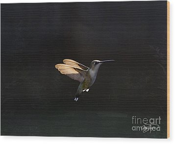 Angel Wings At Sunset Wood Print by Cris Hayes