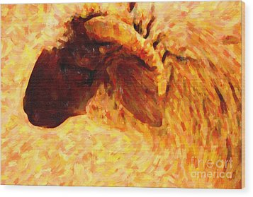 Angora Goat In Abstract Wood Print by Wingsdomain Art and Photography
