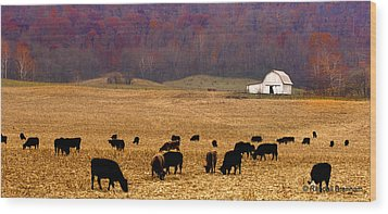 Wood Print featuring the photograph Angus And Oaks  Farm by Randall Branham
