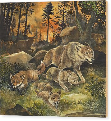Animals United In Terror As They Flee From A Forest Fire Wood Print by G W Backhouse
