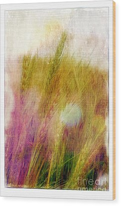 Another Field Of Dreams Wood Print by Judi Bagwell