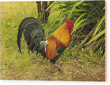 Another Rooster Wood Print by John  Greaves