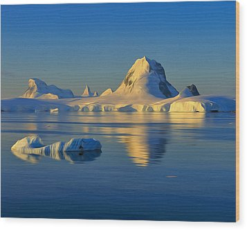 Antarctic Dusk Wood Print by Tony Beck