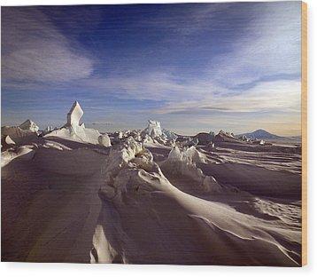 Antarctic Landscape 152 Wood Print by David Barringhaus