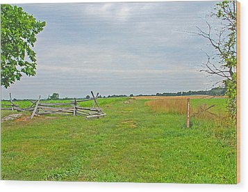 Wood Print featuring the photograph Antietam Battle Of The Cornfield by Cindy Manero