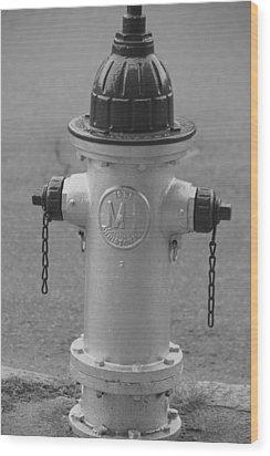 Antique Fire Hydrant Cambridge Ma Wood Print